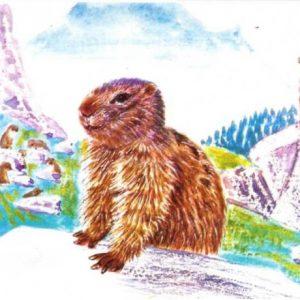 Raimi y la pequeña marmota