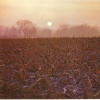 Salida y puesta del Sol