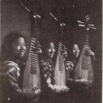 Instrumentos exóticos de cuerda