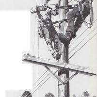 Cables para luz y sonido