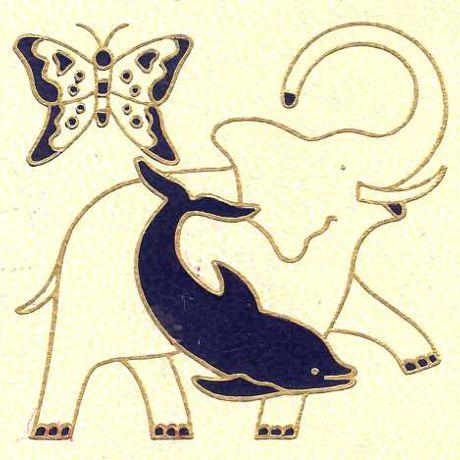 5 – Les animaux